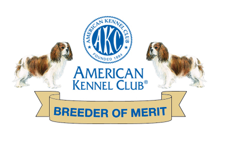 Cavalier breeder of Merit